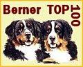 BERNER TOP 100